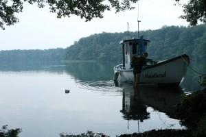 Die Meinhard am Ufer