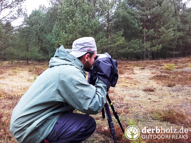 Derbholz Locke beim Fotografieren mit Regenschutz und Stativ