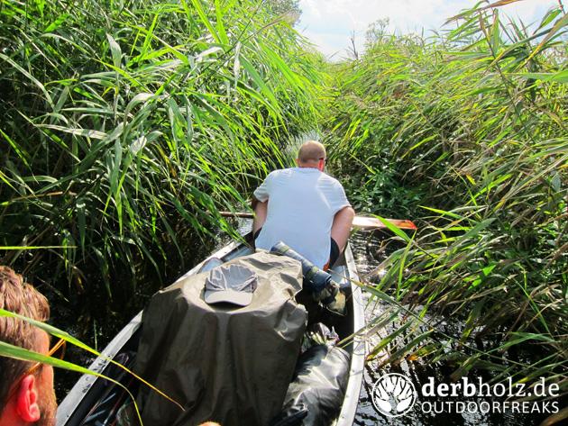 Derbholz mit Kanu im Gebüsch