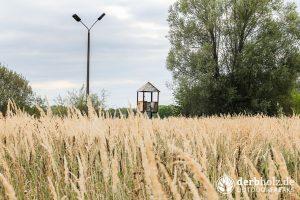 Wachturm hinter Wiese