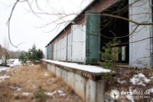 Derbholz MUNA Bunker Wolfsruh Bahnhofshalle