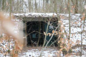 Derbholz MUNA Bunker Wolfsruh Bunker Eingang Nr 55
