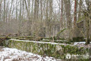 Derbholz MUNA Bunker Wolfsruh Ruinen mit Moos und Schnee