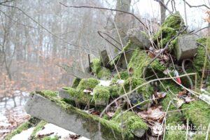 Derbholz MUNA Bunker Wolfsruh Trümmerfeld aus Stahlbeton mit Moos