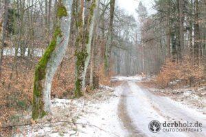 Derbholz MUNA Bunker Wolfsruh Waldweg im Schnee