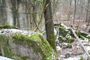 Derbholz MUNA Bunker Wolfsruh moosbedeckte Ruine im Schnee